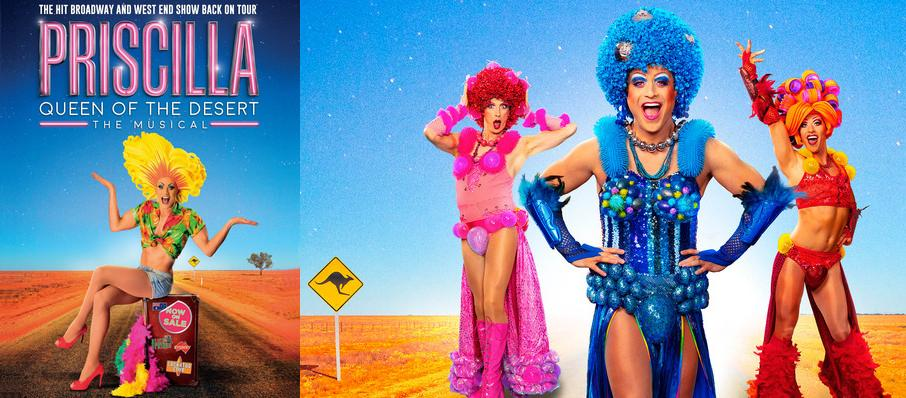 Priscilla, Queen of the Desert at Manchester Palace Theatre