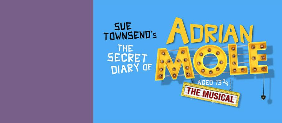 The Secret Diary of Adrian Mole Aged 13 3 4, Ambassadors Theatre, Manchester